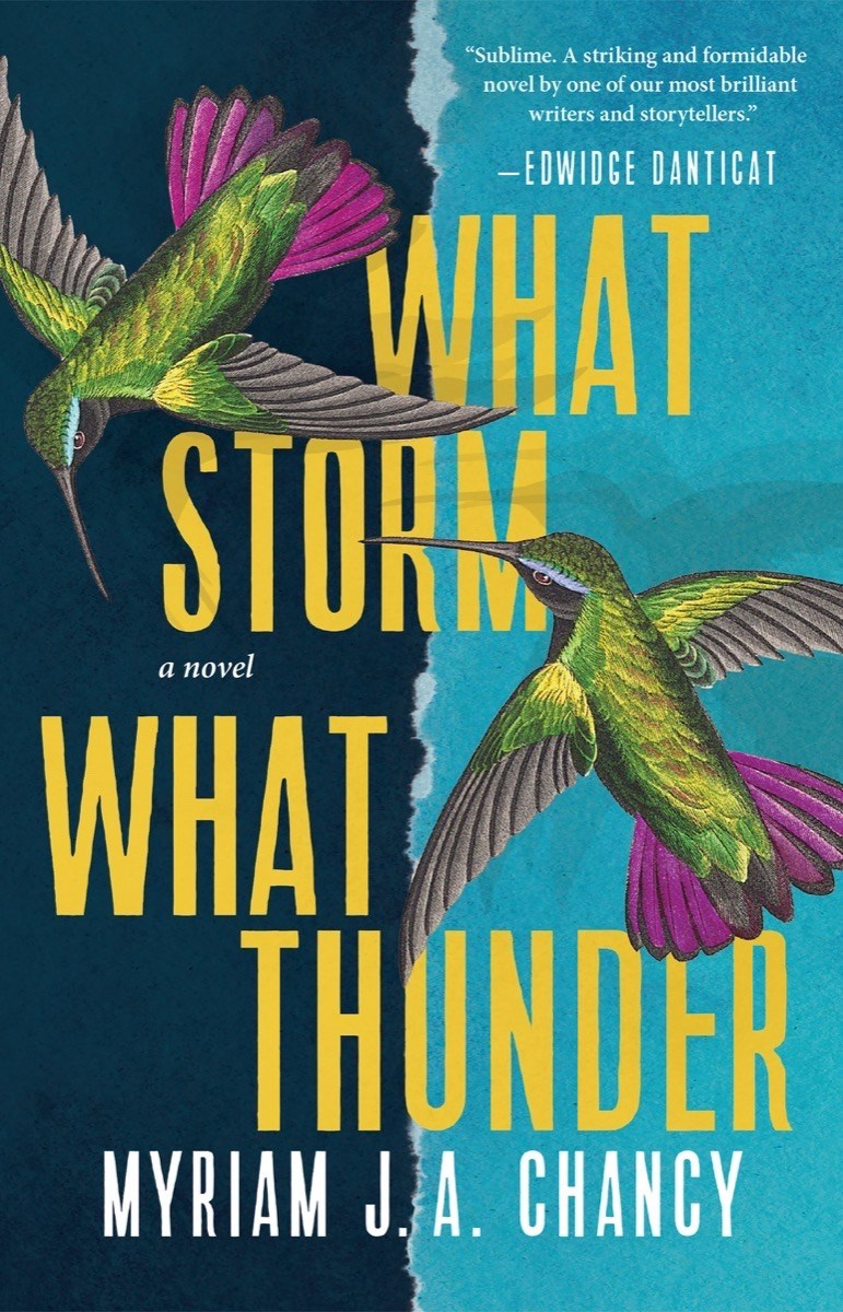 What Storm What Thunder cover image